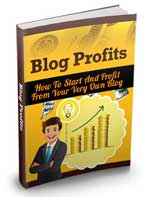 The Blog Profits Guide