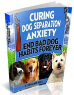 Curing Dog Separation Anxiety