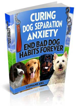 Dog Cure Book