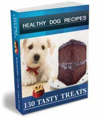 Pamper Your Dog with Food