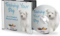 Training Your Dog Audio